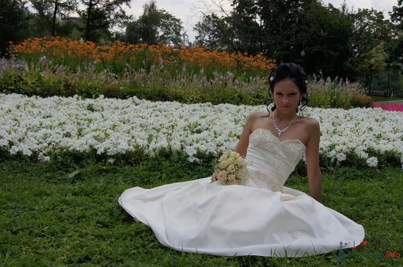 Свадебное платье, кремового цвета, недорого! торг уместен. вышито бисером, корсет с юбкой сдельный. юбка непышная.